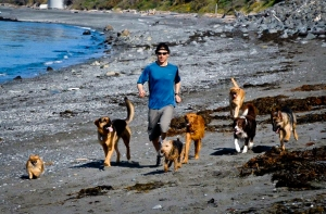 Ben Kersen and Run Club Dogs